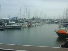Ma ballade en mer en Voilier le 14 avril 16 dans le Golfe du Morbihan (2).jpg